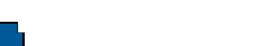 impraegmat-logo-weiss